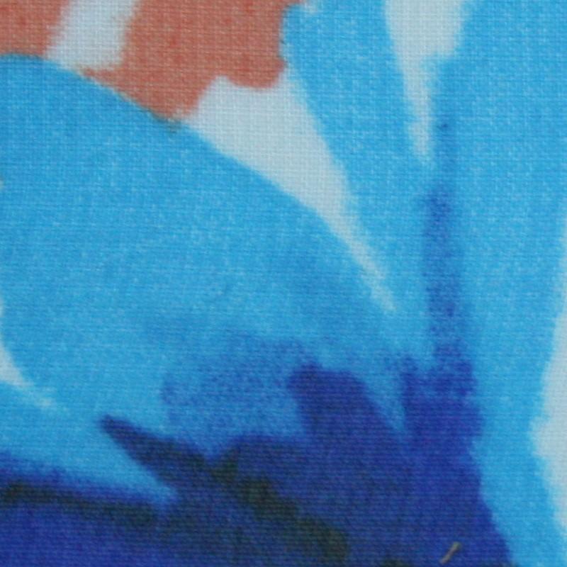 2503 Azul